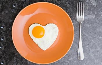 O Ovo e a Doença Cardiovascular